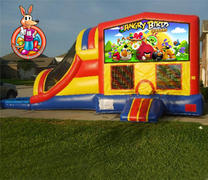 Angry Birds Module 5 in 1 Waterslide Bouncehouse Combo